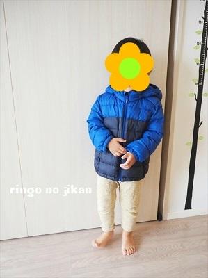 f:id:ringo_co:20181012062413j:plain