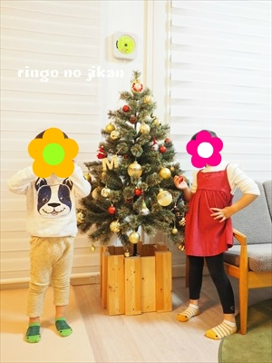 f:id:ringo_co:20181118235126j:plain