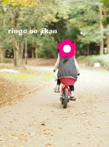 f:id:ringo_co:20181124233153j:plain