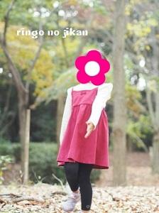 f:id:ringo_co:20181124233302j:plain