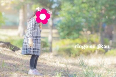f:id:ringo_co:20181124235100j:plain