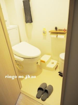 f:id:ringo_co:20181125155147j:plain