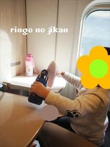 f:id:ringo_co:20190216010527j:plain