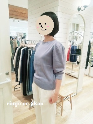 f:id:ringo_co:20190219122221j:plain