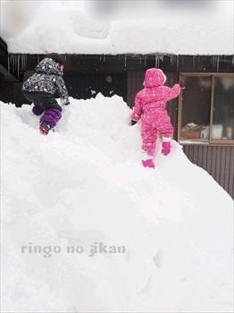 f:id:ringo_co:20190222061432j:plain