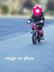 f:id:ringo_co:20190316131027j:plain