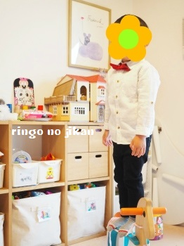 f:id:ringo_co:20190410230402j:plain