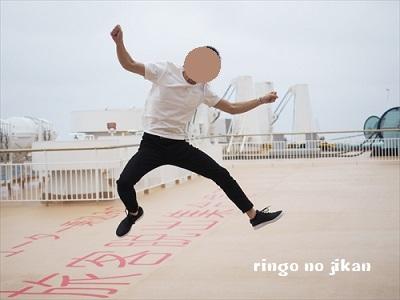 f:id:ringo_co:20190507000752j:plain