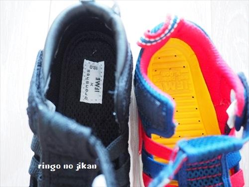 f:id:ringo_co:20190526004113j:plain