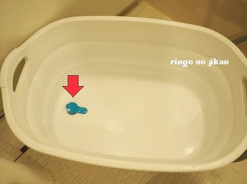 f:id:ringo_co:20190624104930j:plain