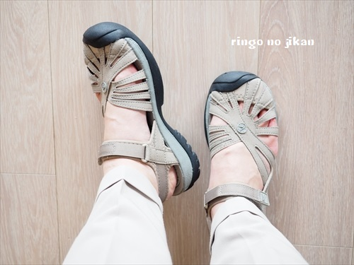 f:id:ringo_co:20190704054335j:plain