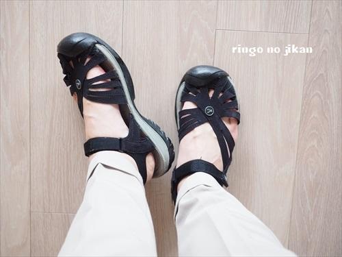 f:id:ringo_co:20190704054558j:plain