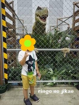 f:id:ringo_co:20190730000428j:plain