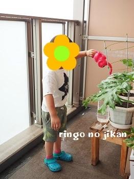 f:id:ringo_co:20190731235605j:plain