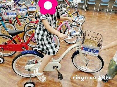 f:id:ringo_co:20190908025732j:plain