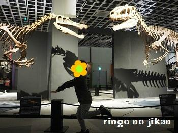 f:id:ringo_co:20191014232345j:plain