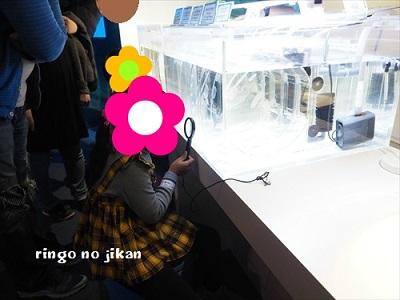 f:id:ringo_co:20191210130909j:plain