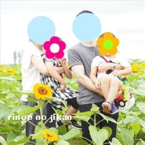 f:id:ringo_co:20191211105557j:plain