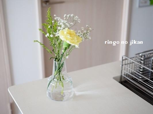 f:id:ringo_co:20200413231148j:plain
