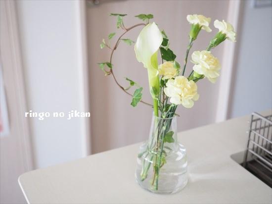 f:id:ringo_co:20200510230726j:plain