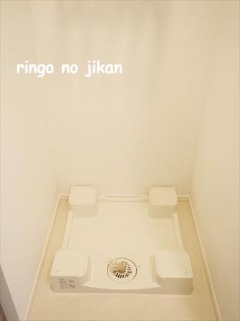 f:id:ringo_co:20201011224837j:plain