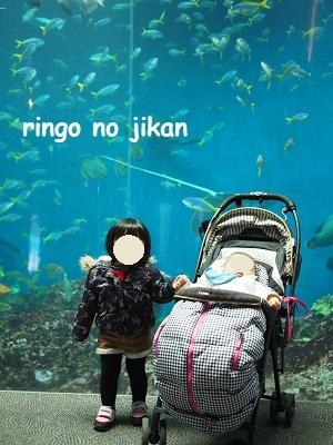 f:id:ringo_co:20201017213929j:plain