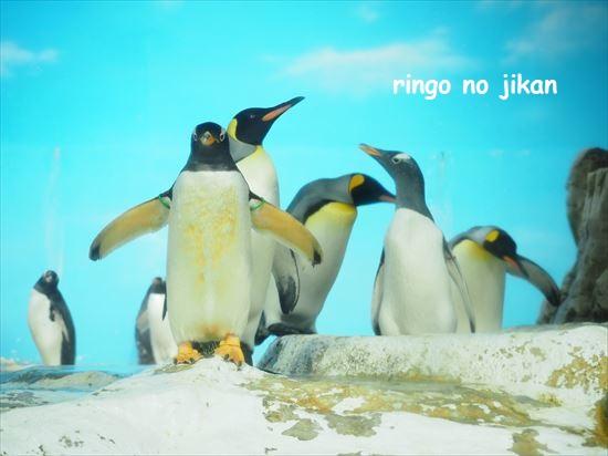 f:id:ringo_co:20201017221253j:plain