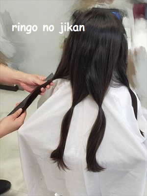 f:id:ringo_co:20201103225503j:plain