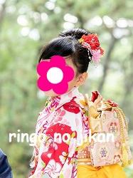 f:id:ringo_co:20201108004202j:plain