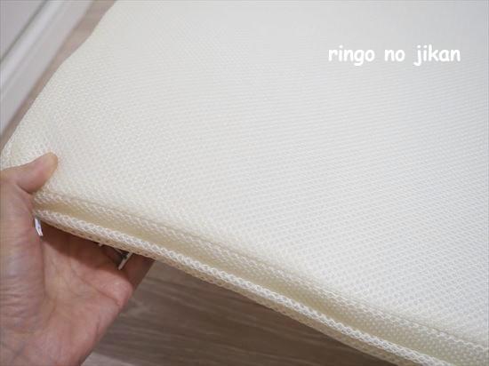f:id:ringo_co:20201112100143j:plain