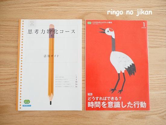f:id:ringo_co:20210106230258j:plain