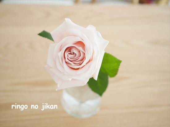 f:id:ringo_co:20210131223421j:plain