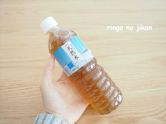 f:id:ringo_co:20210202093949j:plain