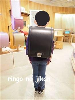 f:id:ringo_co:20210417020522j:plain