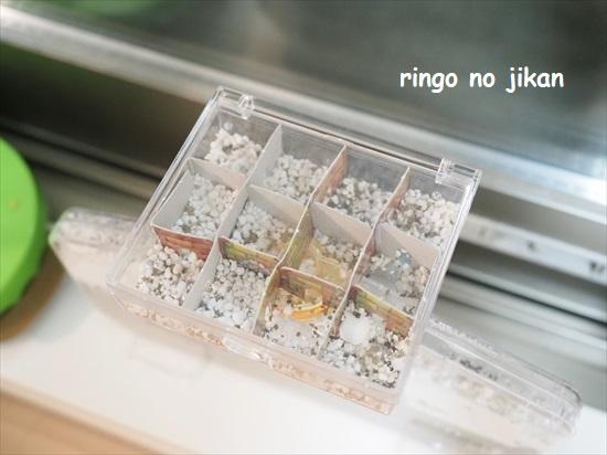 f:id:ringo_co:20210801220258j:plain
