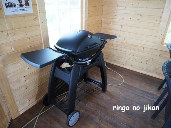 f:id:ringo_co:20210814013816j:plain