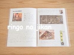 f:id:ringo_co:20210826230150j:plain