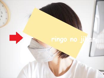 f:id:ringo_co:20210906235503p:plain