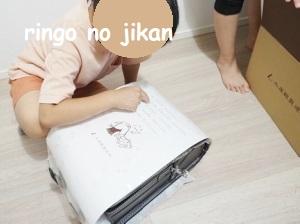 f:id:ringo_co:20211005123802j:plain
