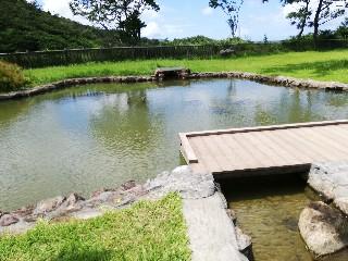 f:id:ringo_okinawa:20200218132841j:image