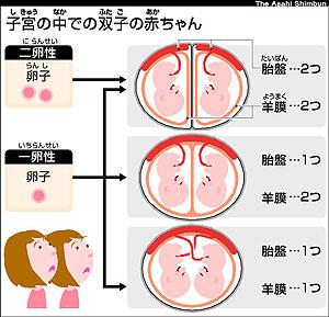 f:id:ringo_okinawa:20200415123321j:plain