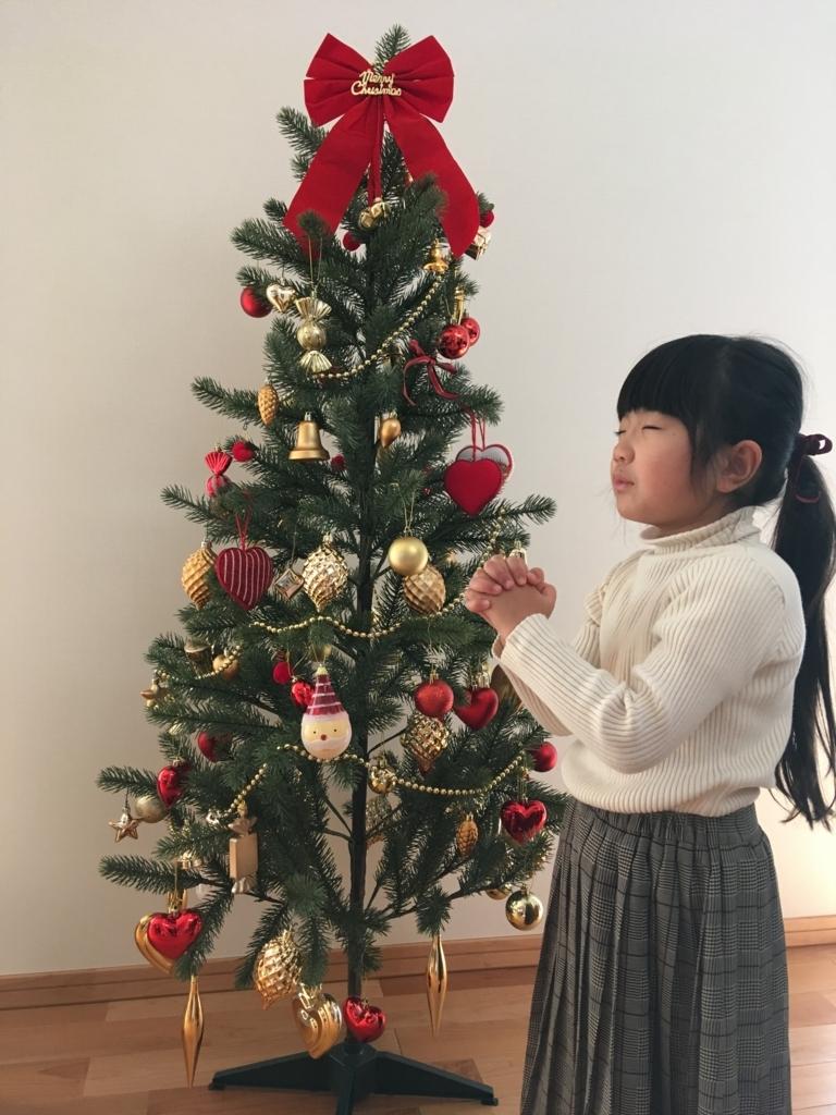 f:id:rinkaitsuyoshi:20171224175800j:plain