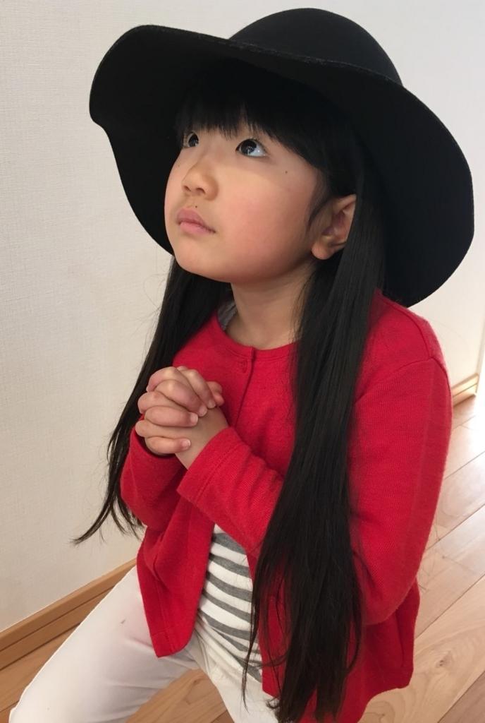 f:id:rinkaitsuyoshi:20180115170623j:plain