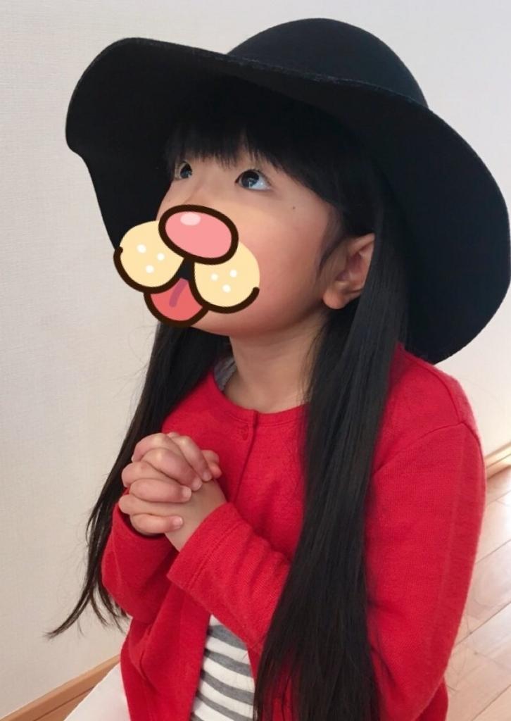 f:id:rinkaitsuyoshi:20180120175453j:plain