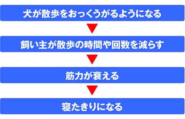 f:id:rinkomichi:20210923142226j:plain