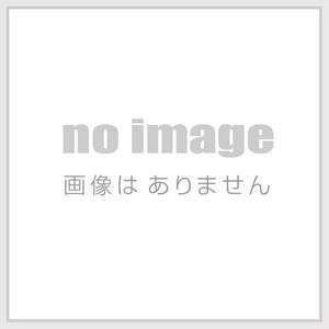 f:id:rinngo-11922911:20170726231151j:plain