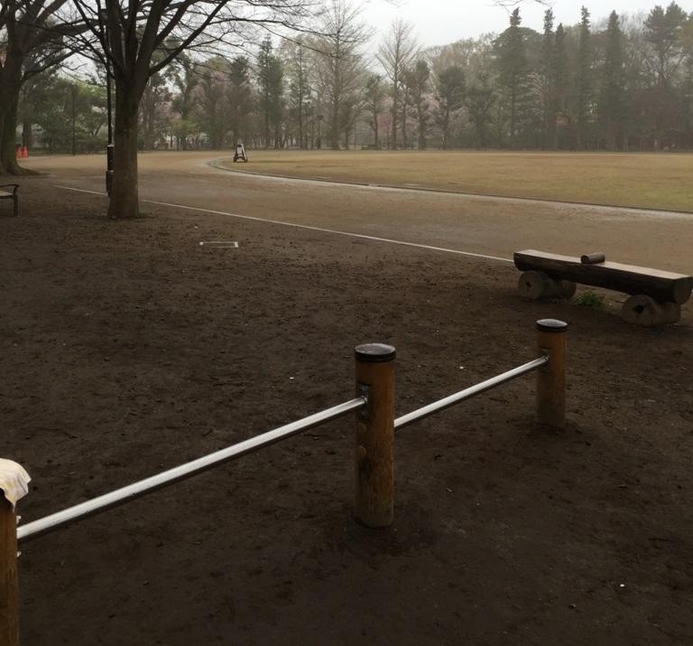 月がきれい 井の頭恩賜公園競技場