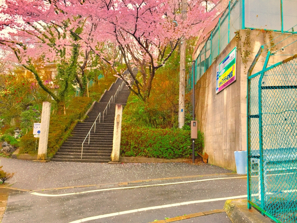 春原と岡崎喧嘩後の階段別視点