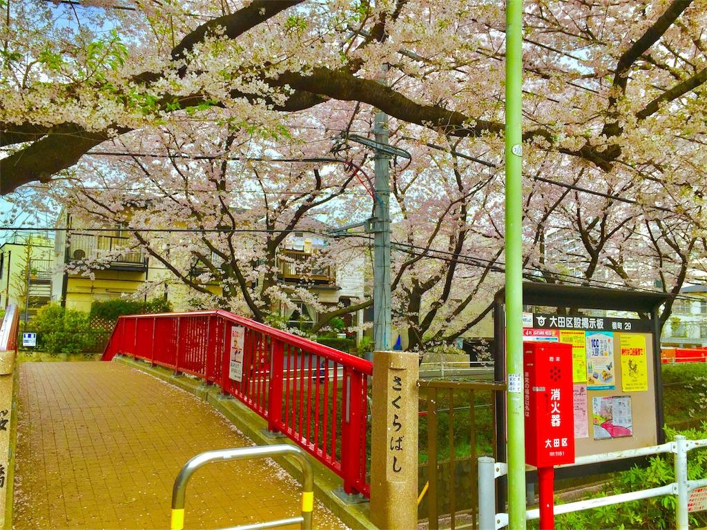 CLANNAD 桜坂
