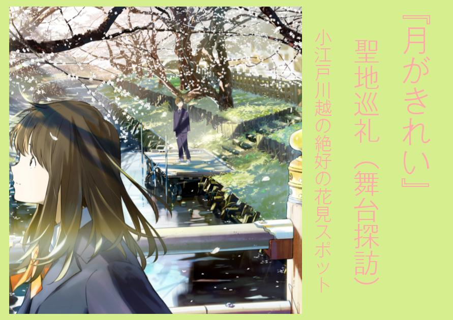 『月がきれい』聖地巡礼(舞台探訪)小江戸川越の絶好の花見スポット